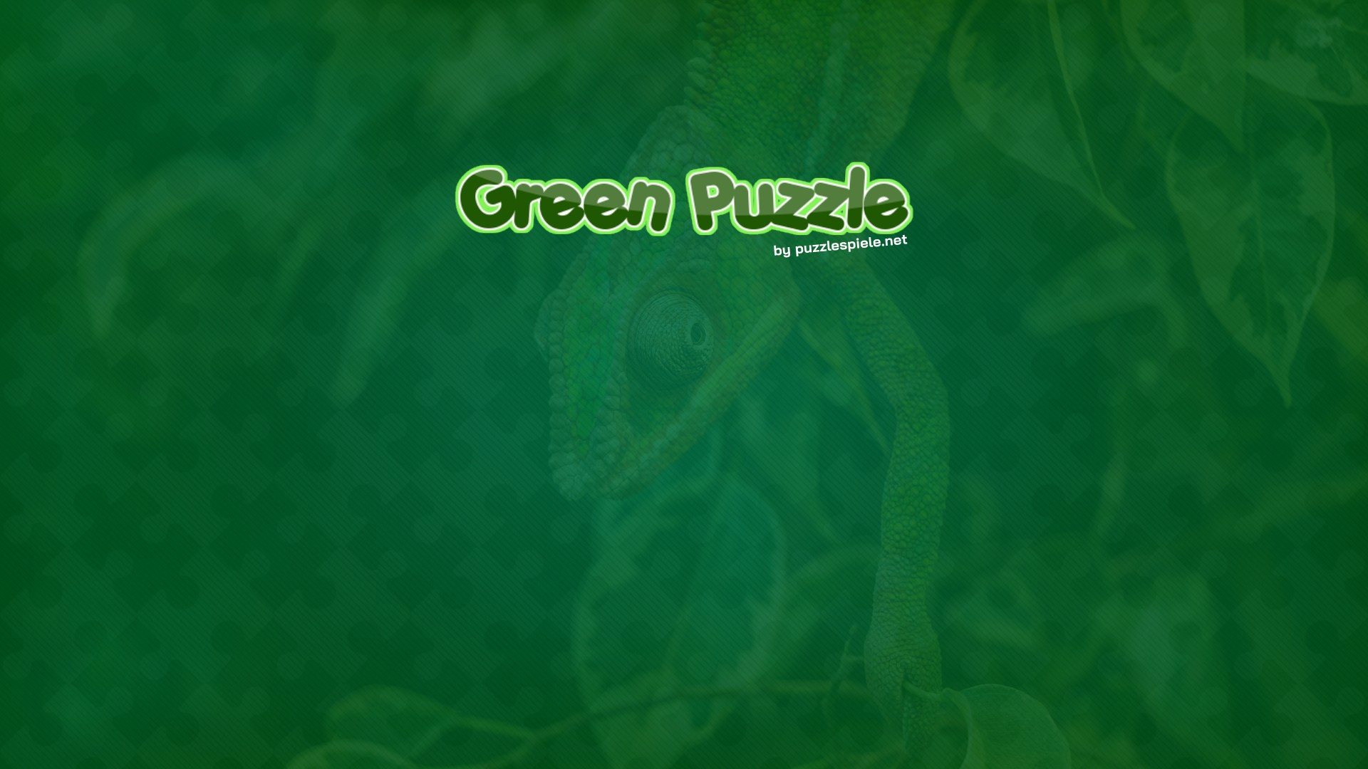 Image Green Puzzle
