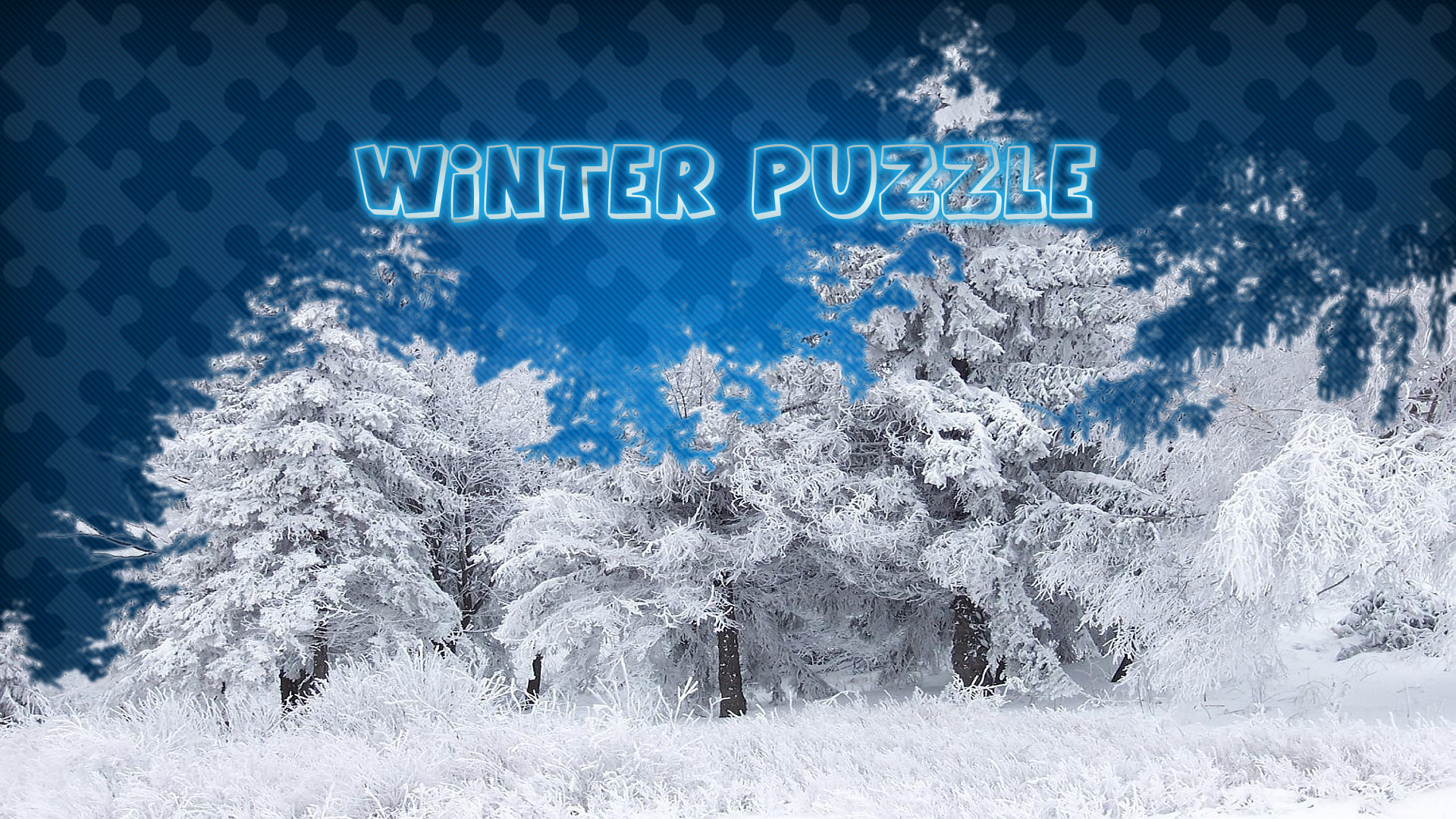 Image Winter Puzzle
